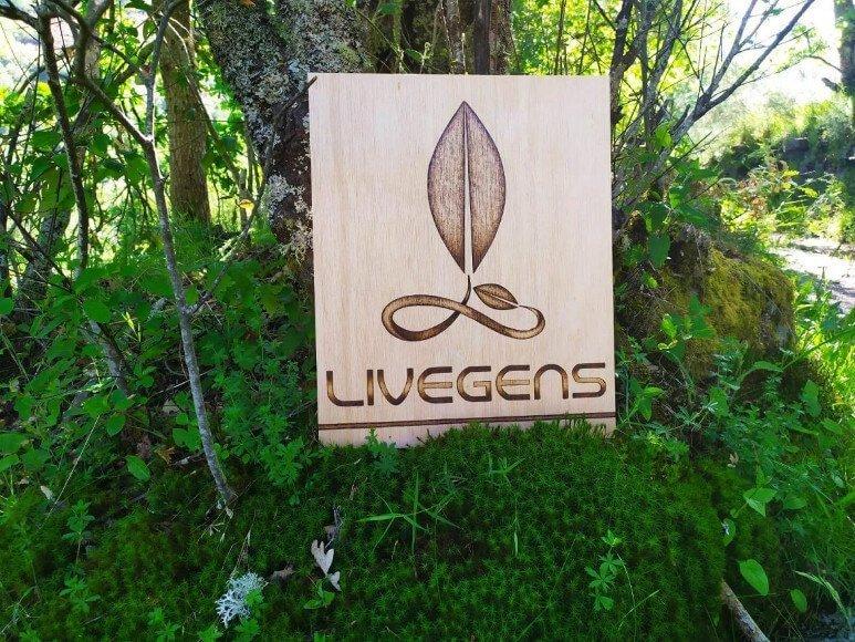 Livegens proyecto de emprendimiento verde